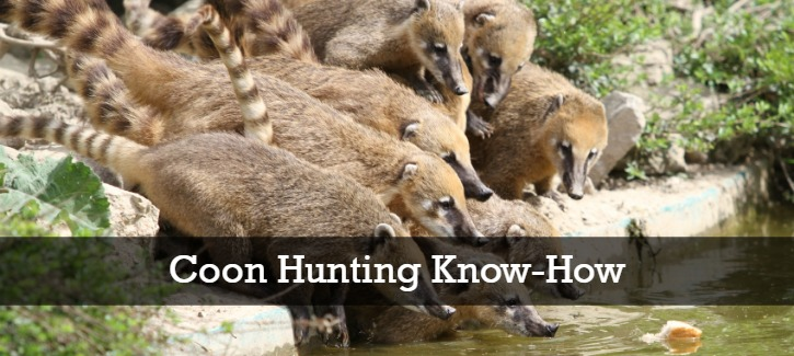 Coon Hunting Know-How Header